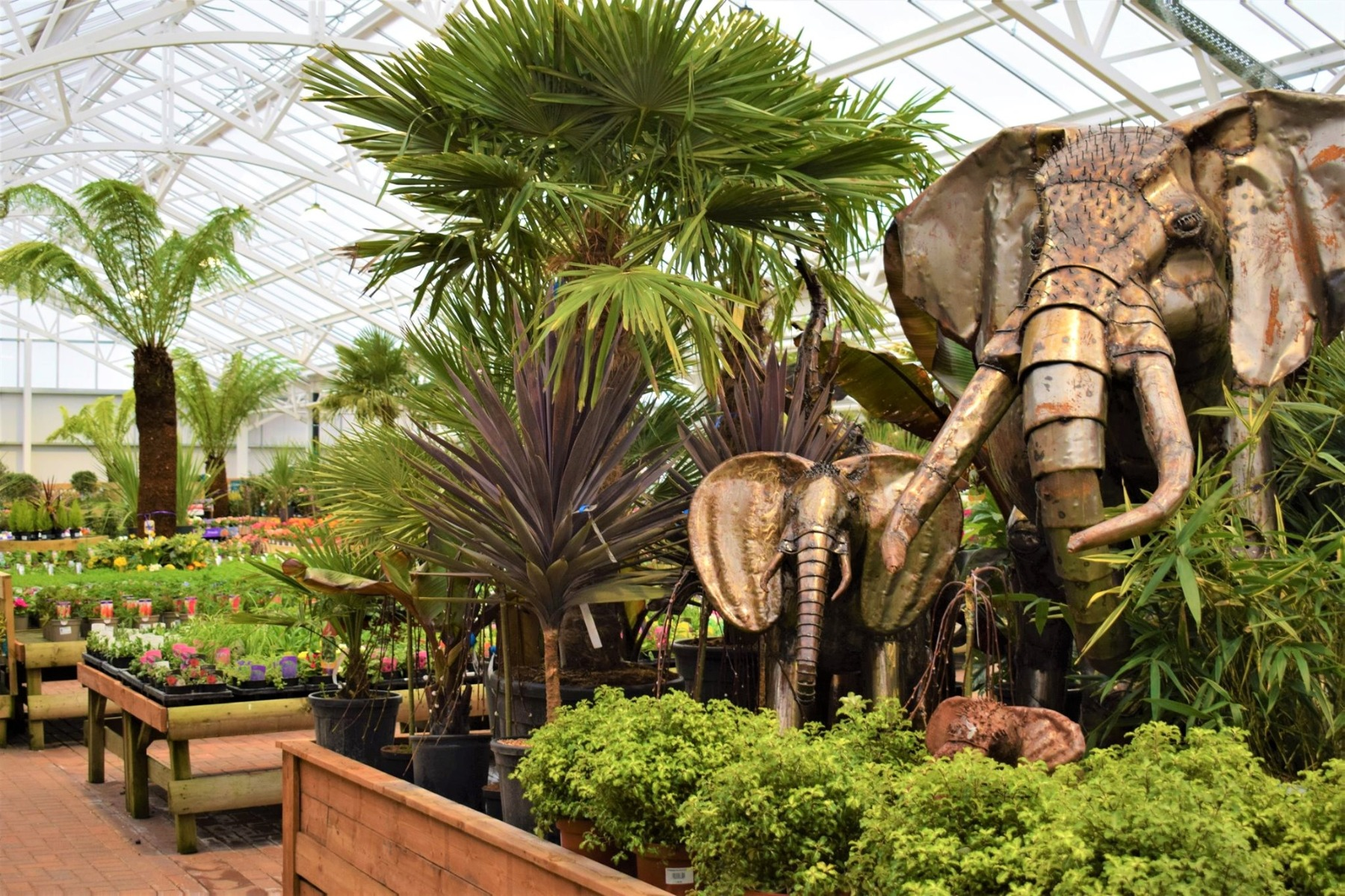 Plant Department
